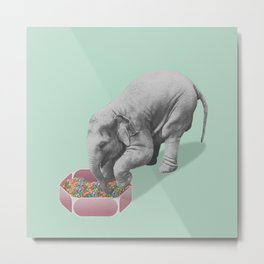 Gourmand elephant (animals collection) Metal Print