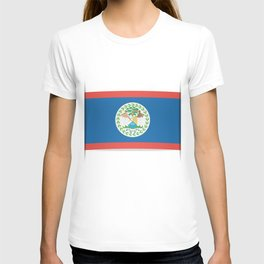 Flag of Belize. The slit in the paper with shadows. T-shirt