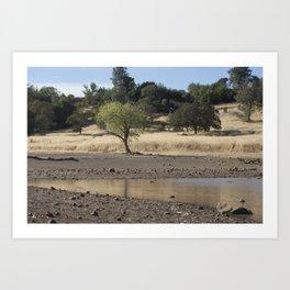 Horseshoe Lake, Chico California Art Print