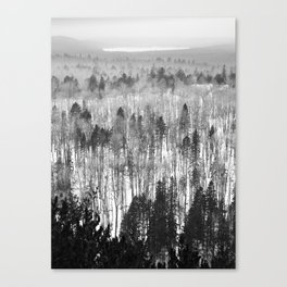 Algonquin Park in Winter, The Lookout Trail Canvas Print