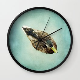 Brown Duck on Teal Blue Green Wall Clock