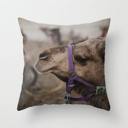Camel at Beduoin Tent in The Negev, Israel Throw Pillow