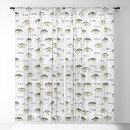 Look Sheer Curtain