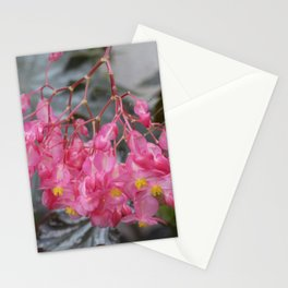Longwood Gardens Autumn Series 321 Stationery Cards