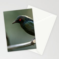 Starling Stationery Cards