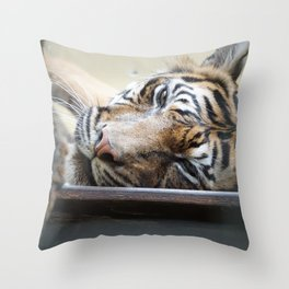relaxed Tiger Throw Pillow