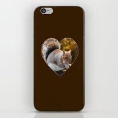 Squirrel nutkin iPhone & iPod Skin
