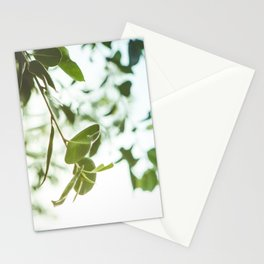 Nature photography green leaf I Stationery Cards