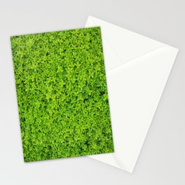 Green Ivy Wall Stationery Cards