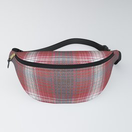 Texture #19 Plaid fabric. Fanny Pack