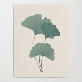 Ginko Leaves Poster