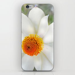 Daisy Dukes iPhone Skin