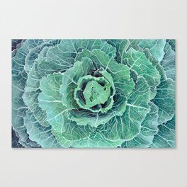 Fall Kale Painting Canvas Print