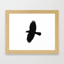 Jackdaw In Flight Silhouette Framed Art Print