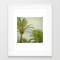palm trees Framed Art Prints featuring Palm Trees by Cassia Beck