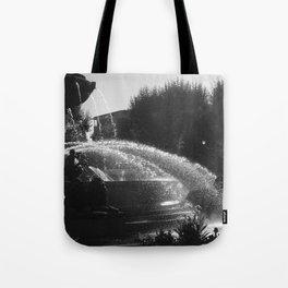 la fontaine de jouvence Tote Bag