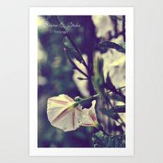 White lies Art Print