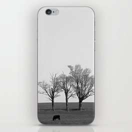 Three Trees and a Bull iPhone Skin