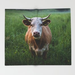 COW - FIELD - GREEN - VALLEY - NATURE - PHOTOGRAPHY - LANDSCAPE Throw Blanket