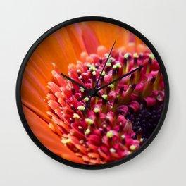 Orange Germini. Wall Clock