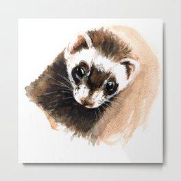 Ferret portrait Metal Print