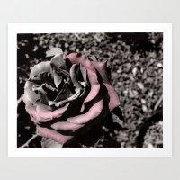 She Rose Art Print