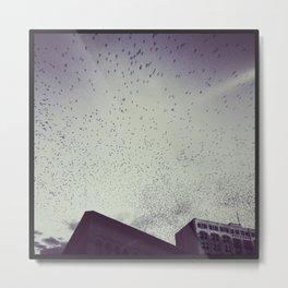 Birds of Chattanooga Metal Print