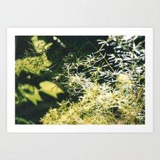 nature 2 Art Print