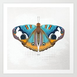 calm: buckeye butterfly Art Print