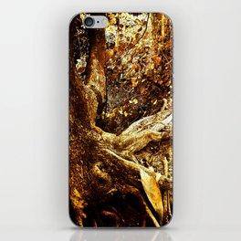 Nature Elders iPhone Skin