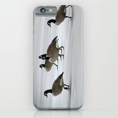 Graceful Geese iPhone 6s Slim Case