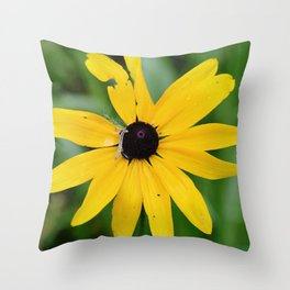 Alone in a Field Throw Pillow