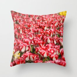 Tulips field 35 Throw Pillow