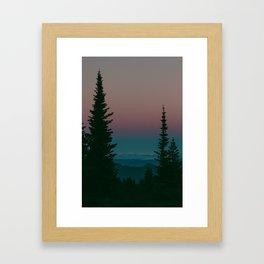 Blue Hour Pines Framed Art Print