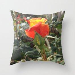 Flamebud II Throw Pillow