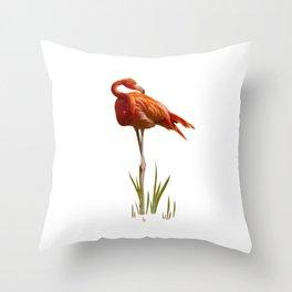 The Florida Flamingo Throw Pillow