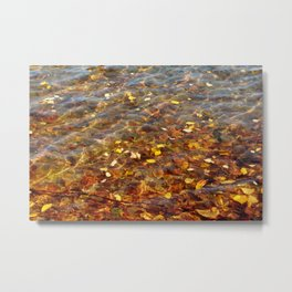 Fall in the Water 56 Metal Print