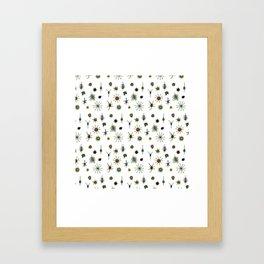 dorstenia mania color Framed Art Print