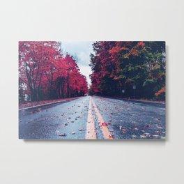 Colorful Way Metal Print