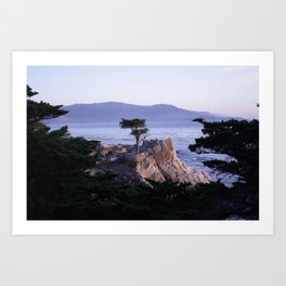 Lonely Cypress in October Art Print