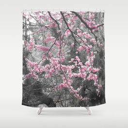 Under The Redbud Tree Shower Curtain