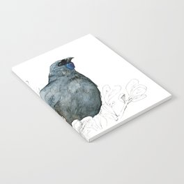 Kōkako, New Zealand native bird Notebook