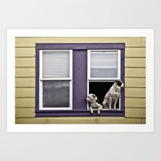 Window Watchers Art Print