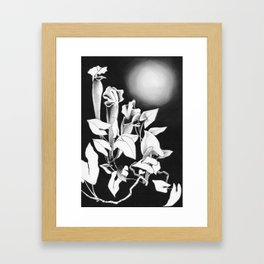 Moonlit Rendezvous Framed Art Print