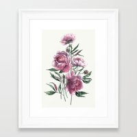 peony Framed Art Prints featuring peony by Dao Linh