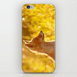 Le P'tit Renard iPhone Skin
