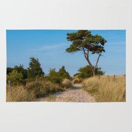 Pine between the dunes Rug