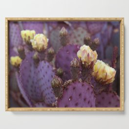 Cactus Flower Series: Purple Yellow Blooms Serving Tray