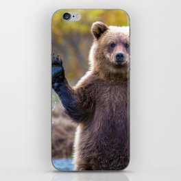Funny Gorgeous Brown Bear Fishing Looks Like He Is Waving At Us Ultra HD iPhone Skin