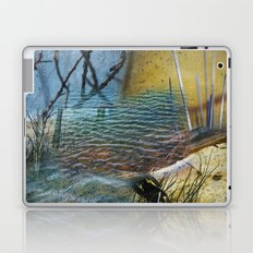 A Day On The Pond Laptop & iPad Skin
